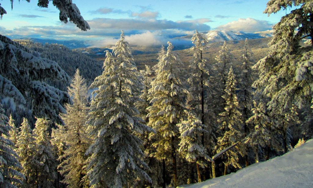 Ski Phoenix Mountain 15