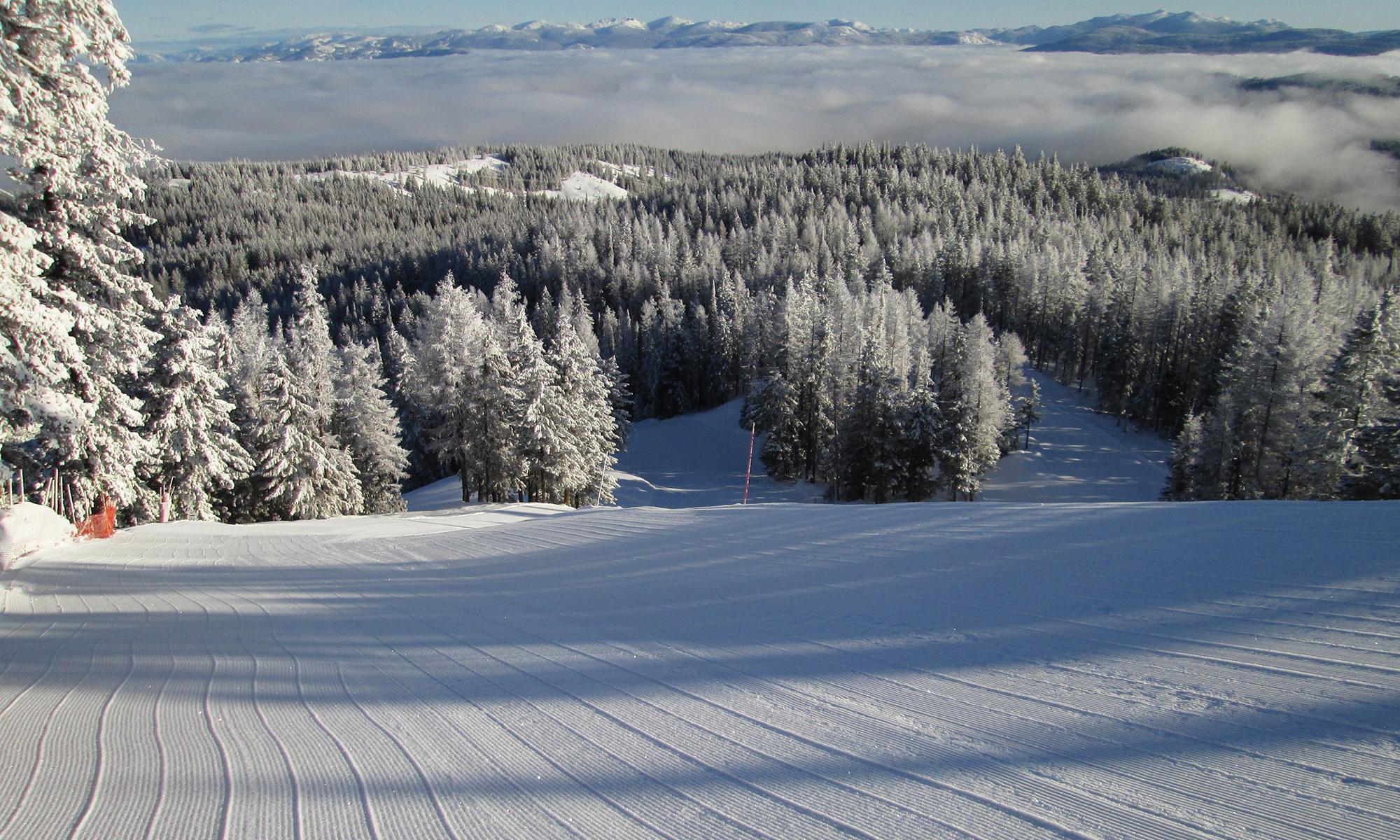 Ski Phoenix